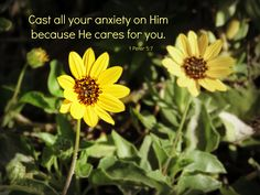 Cast all your anxiety on Him because He cares for you. —1 Peter 5:7  Yesterday, there was a terrible tragedy about an hour's drive from my home. People all over the world are talk…