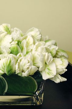Had white parrot tulips at my wedding. Unique ... and gorgeous.