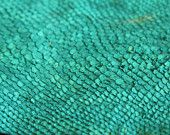 Turquoise Green Exotic Leather Salmon Skin Hide @Lacey Lowndes Neat accent for show jackets?