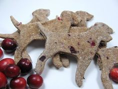 Apple Cranberry Dog Treats from @Doggy Dessert Chef on the BBS Healthy Dog Blog! #dogtreats #christmasrecipes #dogtreatrecipe