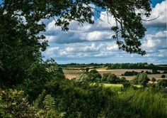 Suffolk countryside in late summer Late Summer, Countryside, Vineyard, Outdoor, Outdoors, Vine Yard, Vineyard Vines, Outdoor Games, The Great Outdoors
