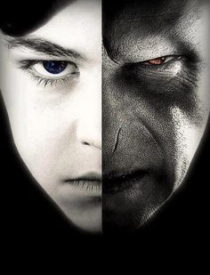 """""""Aquilo que Voldemort não valoriza, ele não toma nenhuma dificuldade de compreender. Dos elfos domésticos e contos infantis, de amor, lealdade e inocência, Voldemort sabe e não entende nada. Nada. Que todos eles têm um poder além do seu próprio, um poder além do alcance de qualquer magia, é uma verdade que ele nunca compreendeu. """"-Dumbledore"""
