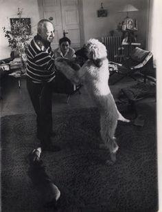 ピカソと犬