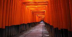 Fushimi Inari Shrine: tempio dei mille tori Kyoto