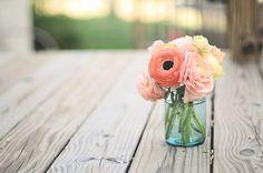 Rununculus my favorite flower