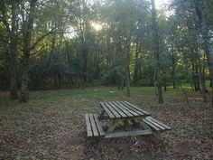 Marta, de som de picnic, nos recomienda los mejores lugares para ir de picnic en familia este otoño. Unas zonas de picnic que no os defraudarán.