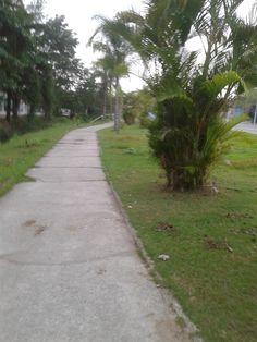 Local de caminhada, localizado na cidade de Magé, RJ. 2016