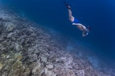 There is so much to discover beneath the surface of the waters of the Maldives, where oceans are brimming with marine life. Snorkelling is the perfect way to explore this underwater world.