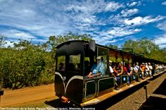 Trem da Selva - Cataratas del Iguazú - Parque Nacional Iguazú - Argentina