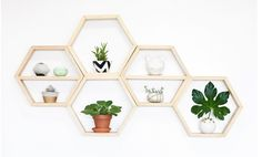 Round gold planter (lower left corner) featured again on San Francisco Bay Area Style Blog www.itsnotheritsme.com
