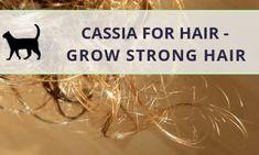 Hair Growth Inhibitor For Face Hair Growth Vitamins For Women Gummies - Modern Vitamins For Hair Growth, Healthy Hair Growth, Best Acne Remedies, Help Hair Grow, Acne Face Mask, Hair Loss Remedies, Face Hair, Natural Skin Care, Strong