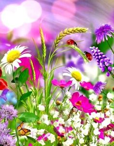 Flores coloridas Flores coloridas The post Flores coloridas appeared first on Easy flowers. Beautiful Flowers Garden, All Flowers, Exotic Flowers, Amazing Flowers, Pretty Flowers, Colorful Flowers, Spring Flowers, Pictures Of Flowers, Forest Flowers