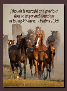 Psalm 103:8 - - Merciful / Gracious / Slow to Anger / Loving-Kindness
