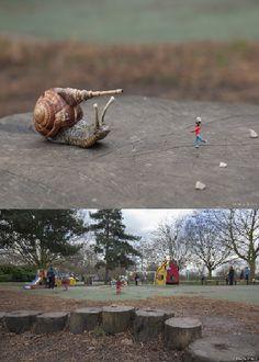 """Play Fighting"" - By Slinkachu,  Wandsworth Common, London"