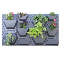 The new PlantScape Vertical Garden allows you to have a garden without ground space. Garden up! Plant a vertical garden or beautify exterior walls. Create a cascade of color for your entryway or snip fresh herbs from your patio wall. Vertical Planting, Vertical Garden Planters, Planter Pots, Vertical Gardens, Nautilus, Contemporary Planters, Drip Irrigation System, Patio Wall, Container Plants