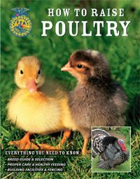 What To Expect At A Poultry Swap And Sale | Backyard Poultry Magazine |  Chickens, Goats U0026 Other Farm Animals | Pinterest | Backyard Poultry, Easy  Chicken ...