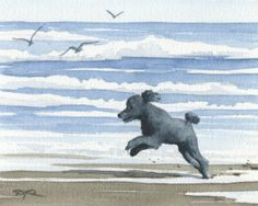 BLACK POODLE At The Beach Dog Watercolor Art Print by k9artgallery, $12.50