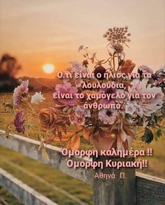 Good Morning Good Night, Greek Quotes, Wonders Of The World, Cool Photos, Colours, In This Moment, Movie Posters, Sunday, Image