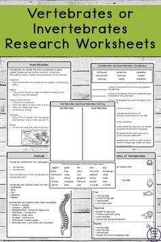 Vertebrates and Invertebrates Research Worksheets - Simple Living. Science Curriculum, Science Classroom, Science Lessons, Science Education, Life Science, 2nd Grade Reading Worksheets, Worksheets For Kids, Animal Worksheets, Printable Worksheets