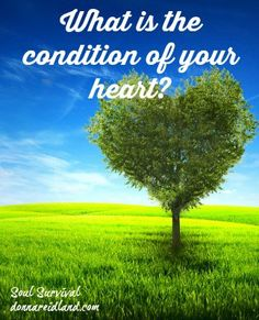 """""""What's the Condition of Your Heart?"""" What kind of soil is your heart?  Is it the hard, often trod, wayside where it's hard for truth to take root? Have you allowed the birds to come and snatch away the seeds because they never penetrated to soil?  Is it rocky ground? Do you let trouble and persecution keep the seed from growing and taking root? Are you more worried about what others might think?  Maybe the ground of your heart is crowded with thorns ... February 23 - Soul Survival"""
