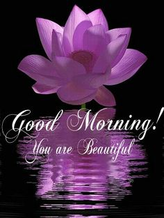 Good Morning! You are Beautiful
