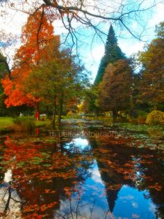 Autumn in Queenstown New Zealand. It look just like this. Would like to go again. Loved it.