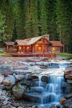 Orman ve ev