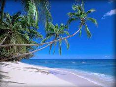 The 5 best beaches Eleuthera | IANREIDSVIDEO.COM