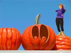 Pumpkin Carving, Pictures, Art, Photos, Art Background, Carving Pumpkins, Kunst, Gcse Art, Drawings