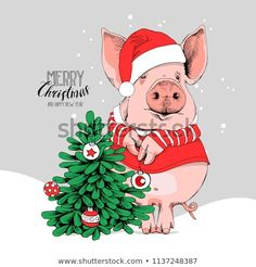 Pig in a Santa's red costume and with a fir tree. New year card, poster, t-shirt composition, hand drawn style print. Christmas Tree Wallpaper, Christmas Tree Art, Merry Christmas And Happy New Year, Christmas Cards, Christmas Cartoons, Christmas Shirts, Tree Tattoo Arm, Frog Drawing, Pig Art