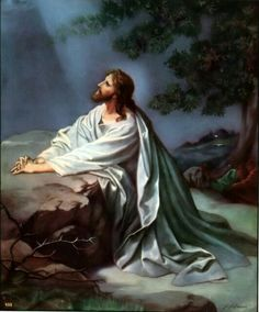 "THE AGONY IN THE GARDEN Jesus comes with his disciples to Gethsemani: ""Stay here, while I go yonder and pray."" ...Father by the merits of the Agony of Jesus in the Garden, have mercy on us."