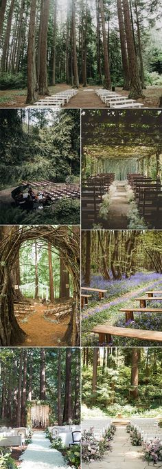 trending forest themed wedding ceremony ideas Forest wedding is another hot trend for 2019 weddings, which is inspired to turn the forest into an ethereal background of a perfect wedding, full. Wedding Ceremony Ideas, Wedding Tips, Fall Wedding, Wedding Events, Wedding Planning, Dream Wedding, Themed Weddings, Picnic Weddings, Wedding Table