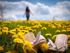 In giant fields of wildflowers, she breathes the air and flies away...she thanks to Jesus for the daisies and the roses in no simple language...