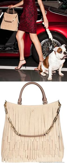 new CH Carolina Herrera handbag collection from her toy poodle, Gaspar♥✤   Keep Smiling   BeStayBeautiful