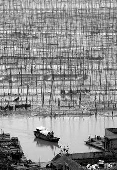 Xiapu mudflats, Fujian Province , China in black and white