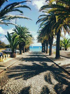 Minha terra: Madeira