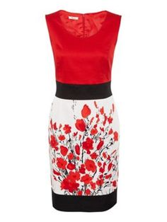 Precis Petite Colour block floral dress Red - House of Fraser