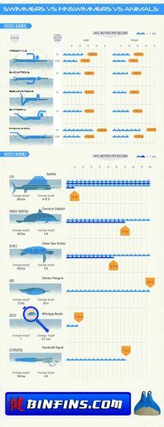 swimming vs finswimming
