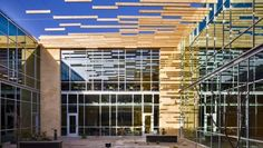 A Suspended Shading System Made from Wood For the GSA Office Building in Albuquerque, N., architecture and engineering firm Page hung western red cedar slats to shade the courtyard and building interior in an elegant and efficient manner. Canopy Curtains, Diy Canopy, Canopy Tent, Canopies, Canopy Bedroom, Fabric Canopy, Window Canopy, Canopy Architecture, Landscaping