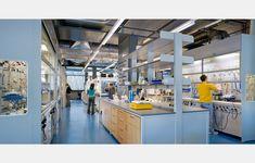 frick chemistry building princeton  payette