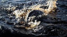 Wyprawa wędkarska do Szwecji na szczupaki, maj 2015 #Sweden #fishingtrip #pike