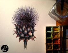 Late night drawing. Cactus flower.  www.facebook.com/estrellaacdesign