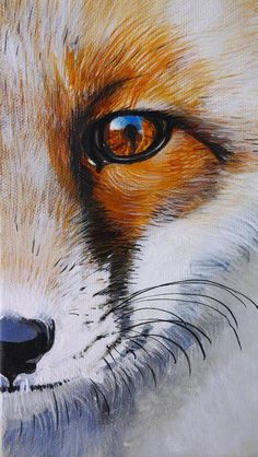 Small Acrylic Painting Fox Animal Forest Nature Brown Yellow White Grey Portrait By Beate Frieling Small Acrylic Painting Fox Etsy Animal Paintings, Animal Drawings, Art Drawings, Fox Painting, Painting & Drawing, Acrylic Painting Animals, Fox Face Paint, Art Fox, Animals Tattoo