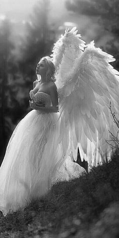 Finally, a non slutty Angel costume idea 😂 Dark Angels, Real Angels, Foto Fantasy, Fantasy Kunst, Fantasy Art, Costume Ange, Angel Wings Costume, Black Angel Costume, Angels Among Us
