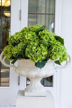 Floral Arrangement - Elegant - green hydrangeas in white urn!