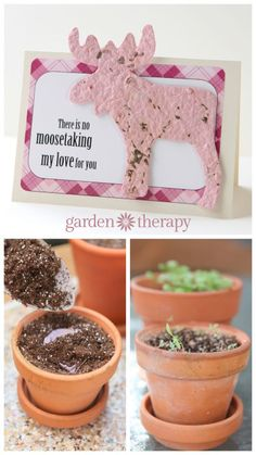 Valentine's Day Cards you can plant and grow! How to make seed paper just with recycled paper, a blender, and some seeds.