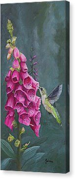 Spring Garden - Foxglove And Hummingbird Prints and accessories by Johanna Lerwick Wildlife/Nature Artist.