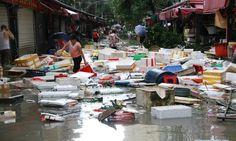 Climate Signals   Typhoon Meranti kills 7 in E China