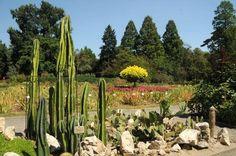 Ogród Botaniczny Uniwersytetu Jagiellońskiego w Krakowie jest najstarszym tego typu ogrodem w Polsce. Więcej na: http://www.nocowanie.pl/noclegi/krakow/ogrody_botaniczne/145049/  #Garden #ogród #Polska #Poland #Europe #Pomysł #idea #ideas #weekend #PomysłNaWeekend