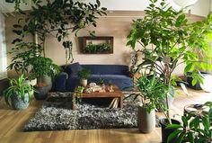サボテンMIX [ プランターセット ] Cactaceae MIX(21022) - ピアンタ×スタンツァの観葉植物 | おしゃれ家具、インテリア通販のリグナ